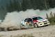 Aleksandrov Rally: till the final stage