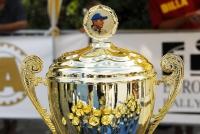 «Александров Ралли»: гонка для самых сильных